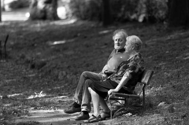 La panchina senza età
