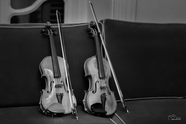 i due violini